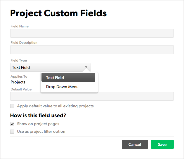 Project custom fields for field type example